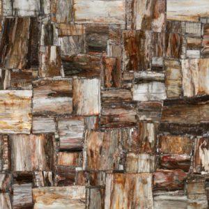 Натуральный камень, Полудрагоценный камень Petro Petrified Wood, фото 1