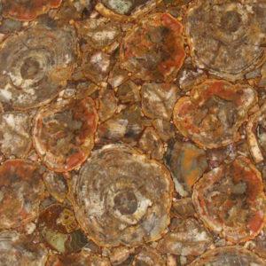 Натуральный камень, Полудрагоценный камень Petryfywood Round, фото 1